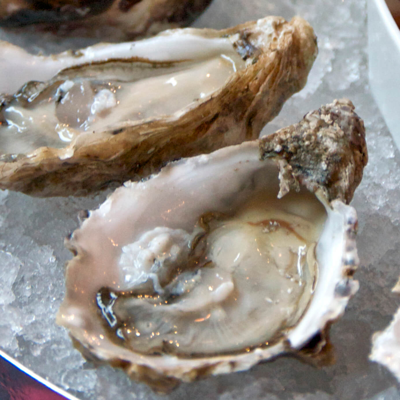 Oysters Royal - les huîtres à l'honneur